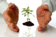 Hacer Crecer Su Negocio